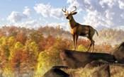 Buck Over Autumn Valley