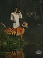 Dreams Of Tigers And Bubbles