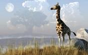 Giraffe And Giant Tree