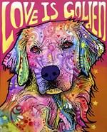 Love is Golden