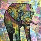Elephant Torn