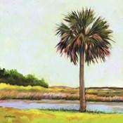 Marsh Palm