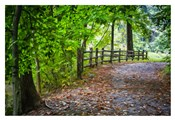 Laurels Pathway