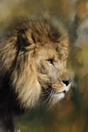 Spring Lion 2