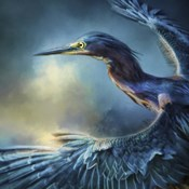 Flight Of The Green Heron