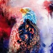 Jazzy Bald Eagle