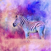 Jazzy Zebra Pink And Purple