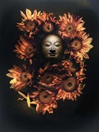 Budda Head In A Bed Of Daisies