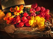 Fresh Cut Tulips