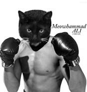 Meowhammad Ali