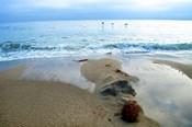 Zuma Beach, Ca