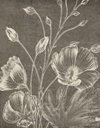 Botanical Beauty Chalk IX Crop