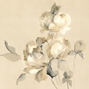 Peony Blossoms Crop