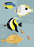 Tropical Fish Squares