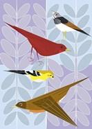 Songbird Squares