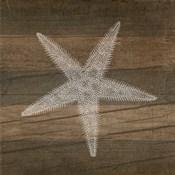 Rustic Starfish - White