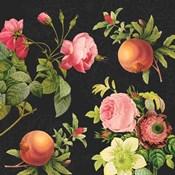 Pomegranates and Roses II