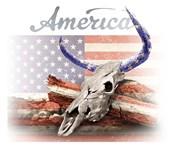 America on White