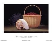 Nantucket Harvest