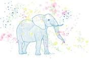 Happy Elephant II