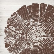 Tree Rings III