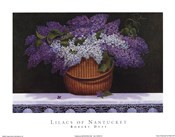 Lilacs of Nantucket