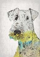 Abstract Dog III
