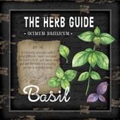 Herb Guide Basil