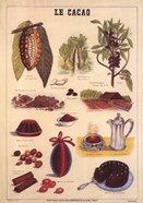 Le Cacao