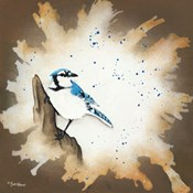 Weathered Friends - Blue Jay