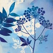 Blue Sky Garden I