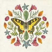 Butterfly Mandala III