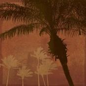 Caribbean Sun II