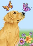 Butterfly And Dog