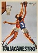 Basketball Pallacanestro