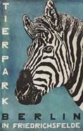 Berlin Zebra