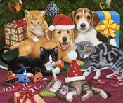 Christmas Meeting - Kittens and Puppies