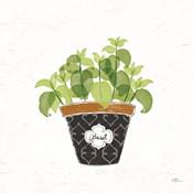 Fine Herbs VIII