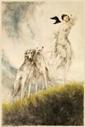 Deco Dogs
