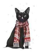 Black Cat, Red Scarf