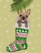 French Bulldog in Christmas Stocking