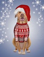 Pitbull in Christmas Sweater