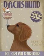 Dachshund, Gold, Ice Cream