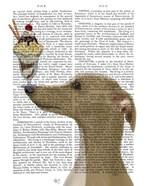 Greyhound, Tan, Ice Cream