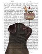 Pug, Black, Ice Cream