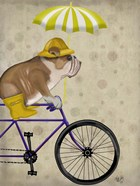 English Bulldog on Bicycle