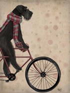 Schnauzer on Bicycle, Black