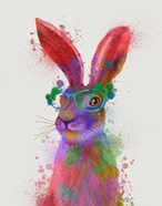 Rainbow Splash Rabbit 2, Portrait