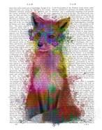 Rainbow Splash Fox 1