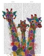 Rainbow Splash Giraffe Trio